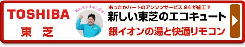 area_name新しい東芝エコキュート 銀イオンの湯と快適リモコン